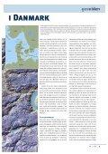 De seneste 150.000 år i Danmark - Geocenter København - Page 3