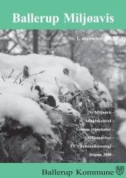 Dec 2003 - Ballerup Kommune