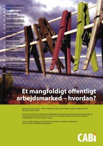 Et mangfoldigt offentligt arbejdsmarked - Hvordan.pdf - Cabi