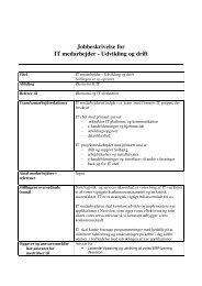 Jobbeskrivelse for IT medarbejder - Udvikling og drift