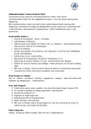Jobbeskrivelse: Licens kontrol Chef