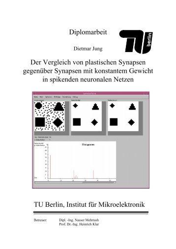 Diplomarbeit Der Vergleich von plastischen Synapsen gegenüber ...