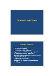 helmint fertőzések filariasis