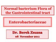 Normal bacterium Flora of the Gastrointestinal tract