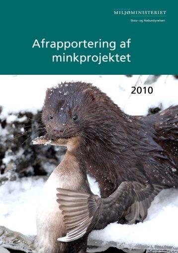 Minkens - Naturstyrelsen