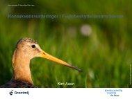 Konsekvensvurderinger i Fuglebeskyttelsesområderne