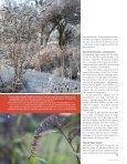 ALT OM HAVEN 1 - 10 - Havearkitekt Kjeld Slot - Page 6