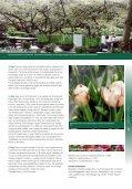 Praktiske oplysninger - Cultours - Page 3