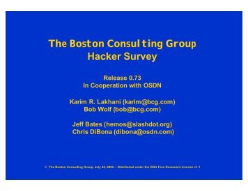 The Boston Consulting Group Hacker Survey - mirror