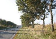 Landskab og visuelle forhold - Vejdirektoratet