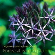 Forny dit liv med planter - Webkommunikator