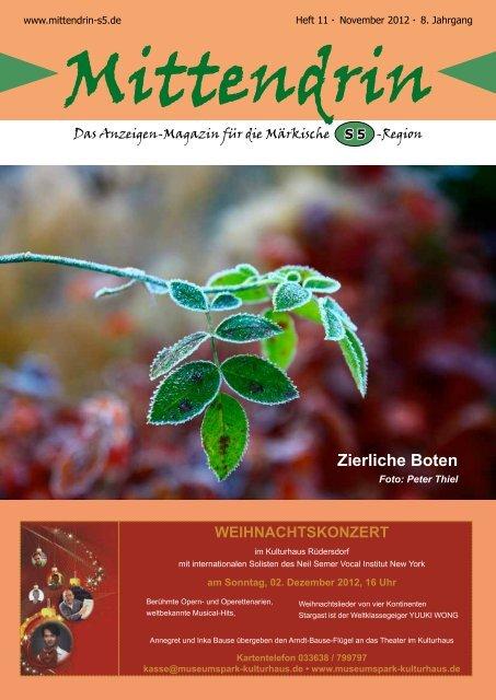 Ausgabe November 2012 - mittendrin-s5.de