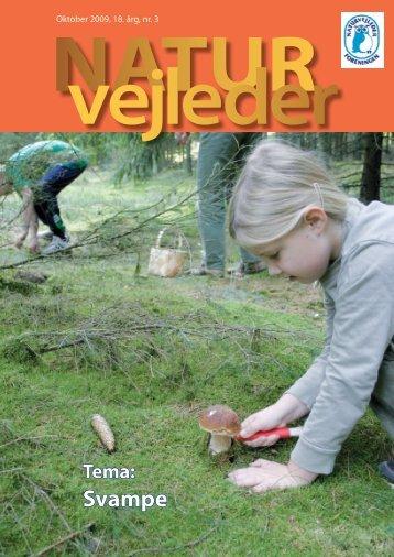 Svampe - Naturvejlederforeningen i Danmark