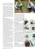 Svampe - Naturvejlederforeningen i Danmark - Page 7