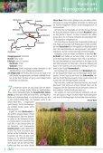 Das Radverkehrsnetz in und um Herzogenaurach - Stadt ... - Seite 6