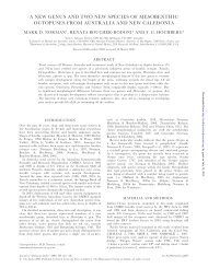 a new genus and two new species of mesobenthic octopuses from ...