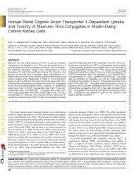 Human renal organic anion transporter 1 - Molecular Pharmacology ...