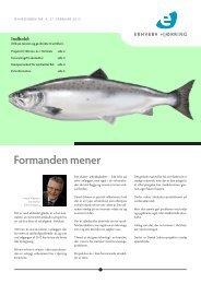 Danish Salmon - Erhverv Hjørring