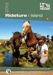 Rideferie i Island - North Travel
