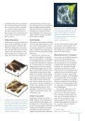 Side 10-11: Grundforskning med og uden visioner - Page 2