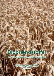 Biobrændstoffer kan true miljø, natur og ... - 92 Gruppen