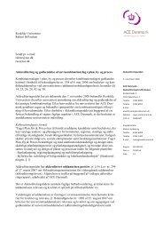 Plan, by og Proces - ACE Denmark