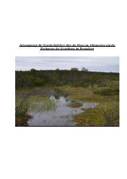 Was sind Moore - Revitalisierung erzgebirgischer Moore - Naturpark ...