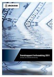 Rapporten (pdf) - Hvitvasking.no