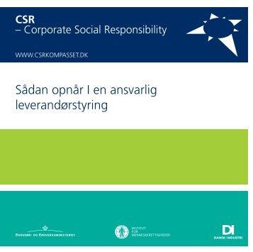 CSR - DI