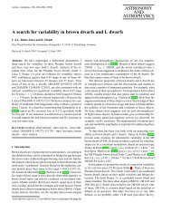 A search for variability in brown dwarfs and L dwarfs