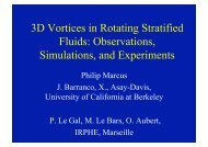 3D Vortices in Rotating Stratified Fluids: Observations, Simulations ...