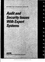 Audit and Security Issues with Expert Systems - University of ...