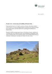 Læs mere om projektet - Naturstyrelsen