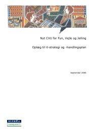 Nyt CVU for Fyn, Vejle og Jelling Oplæg til it-strategi og ...