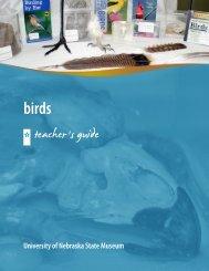 Teacher's Guide (PDF) - University of Nebraska State Museum