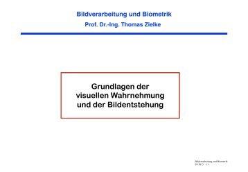 Grundlagen der visuellen Wahrnehmung und der Bildentstehung