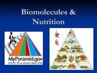 Biomolecules & Nutrition - my CCSD