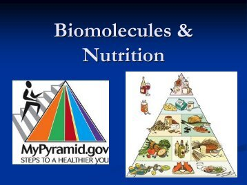 Biomolecules & Nutrition - my CCSD