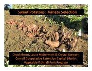 2011 Winter Meeting and 2012 Sweet Potato School Variety ...