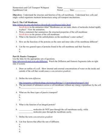 Cell Transport Worksheet For 6th Grade - cell transport worksheet ...