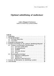 Optimal udskiftning af malkekøer - Herd Management - SCIENCE