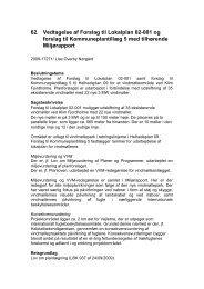 62. Vedtagelse af Forslag til Lokalplan 02-001 og forslag til ...