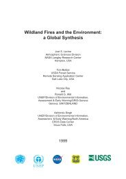 Wildland Fires and the Environment: a Global Synthesis