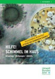 HILFE! SCHIMMEL IM HAUS - Potsdam