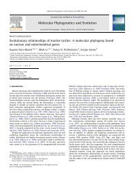 Evolutionary relationships of marine turtles: A ... - ResearchGate