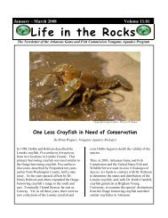 Life in the Rocks - The Center for North American Herpetology