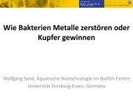 Wie Bakterien Metalle zerstören oder Kupfer gewinnen
