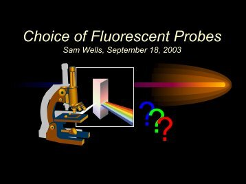 Fluorescence: Chemical and Physical Properties