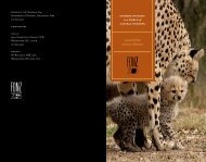 2006 FONZ Annual Report immerse yourself in a - National Zoo ...