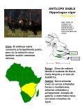 Dieta - National Zoo - Page 5
